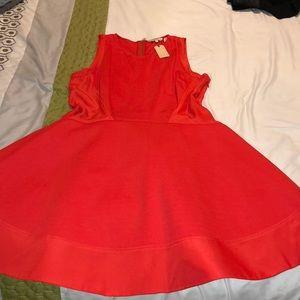 RED Ted Baker Contrast Side Detail Dress